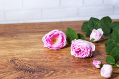 Flower tea rose buds on old wooden table Stock Image