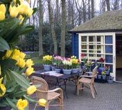 Flower terrace. Dutch flower terrace stock photo