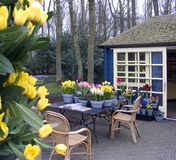 Flower terrace stock photo