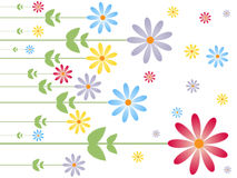 Flower texture. Illustration of flowers on white background. EPS file available Royalty Free Stock Image
