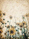 Flower texture background. Vintage cracked canvas with flowers Royalty Free Stock Image