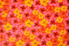 Flower texture background Royalty Free Stock Images