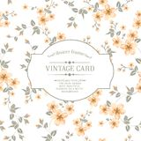 Flower texture on vintage card. Stock Images