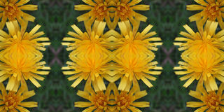 Flower tiles. Abstract floral yellow seamless tile Stock Photos