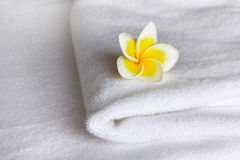 Flower on the towel Royalty Free Stock Image