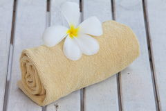 Flower on towel roll Royalty Free Stock Photo