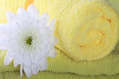 Flower and towels Stock Photography