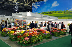 Flower trade fair Royalty Free Stock Images