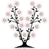 Flower Tree Stock Photos