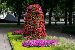 Flowers at the Esplanade Park. Riga, Latvia. Flower trees at the Esplanade Park on a sunny summer day. Riga, Latvia Royalty Free Stock Image