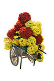 Flower trolley Stock Image