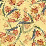 Yellow tulips bouquet of color pencil. Floral seamless pattern for design on a cream background. Flower tulip background hand illustration color pencil plants Stock Photography