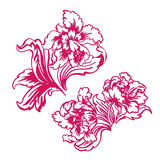 Flower tulip Royalty Free Stock Photos
