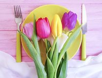 Flower tulip blooming , a plate vintage dinner on a pink wooden romantic background, birthday. Flower tulip, a plate on a pink wooden background birthday stock photo