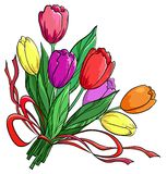 Flower, tulips, bouquet. Flowers tulips, holiday bouquet on a white background Royalty Free Stock Photos