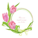 Flower tulips bouquet frame isolated on white background Stock Photos