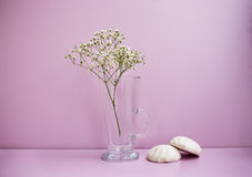 Flower and two zephyrs. Glass vase with white flower and two zephyrs on pink background. Horizontal imagination Stock Photography