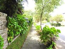 flowerulica przy Gramado zdjęcia royalty free