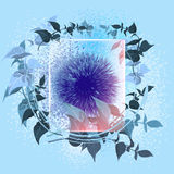 Flower under glass wiht blue backgraund Royalty Free Stock Photo