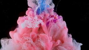 Flower under water and Splashes of colored ink, bright colors. stock footage