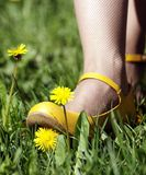 Flower under yellow shoe Royalty Free Stock Photos