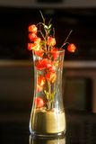 Flower vase Stock Photos