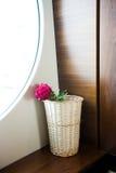 Flower in vase royalty free stock photo