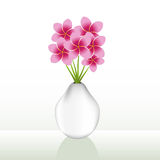 Flower Vase Stock Photography