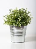 Flower vase Stock Photos