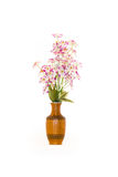 Flower in vase Royalty Free Stock Images