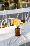 Flower vase on dining table Stock Photo