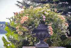 Flower vase in garden Royalty Free Stock Photo