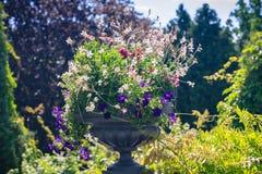 Flower vase in garden Stock Photo