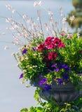 Flower vase in garden Royalty Free Stock Image