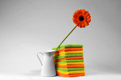 Flower in vase and microfiber towel Royalty Free Stock Photography