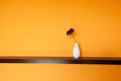 Flower in vase near wall