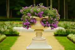 Flower vase in park Royalty Free Stock Photos