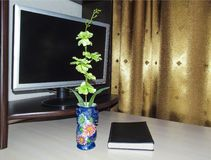 Flower in a vase on a table with a monitor royalty free stock photo