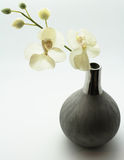 Flower in a vase Stock Photography