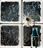 Flower Vase in Window Royalty Free Stock Photography