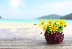 Flower vase on wood and beach background Stock Image