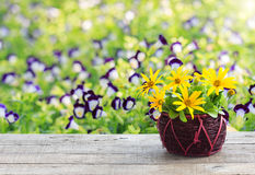 Flower vase on wood table and space garden background Royalty Free Stock Image