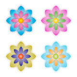 Flower Vector. Different Color Flower illustrations on white background Stock Photo
