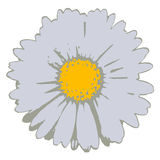 Flower (vector) Royalty Free Stock Photography