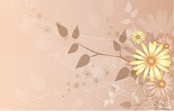 Flower Vector Background Royalty Free Stock Photos