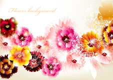 Flower vector background Stock Photos