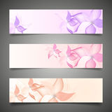 Flower vector background brochure template. Stock Photos