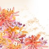 Flower vector background with lily flowers for design Stock Image
