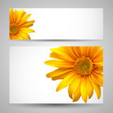 Flower vector background templates Stock Photos