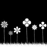Flower Vector Black and White. Stock Photos